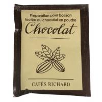 Pudra de Ciocolata Calda Dairy Powder Richard 30gr