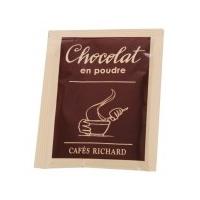 Pudra de Ciocolata Calda Dairy Powder Richard 20g